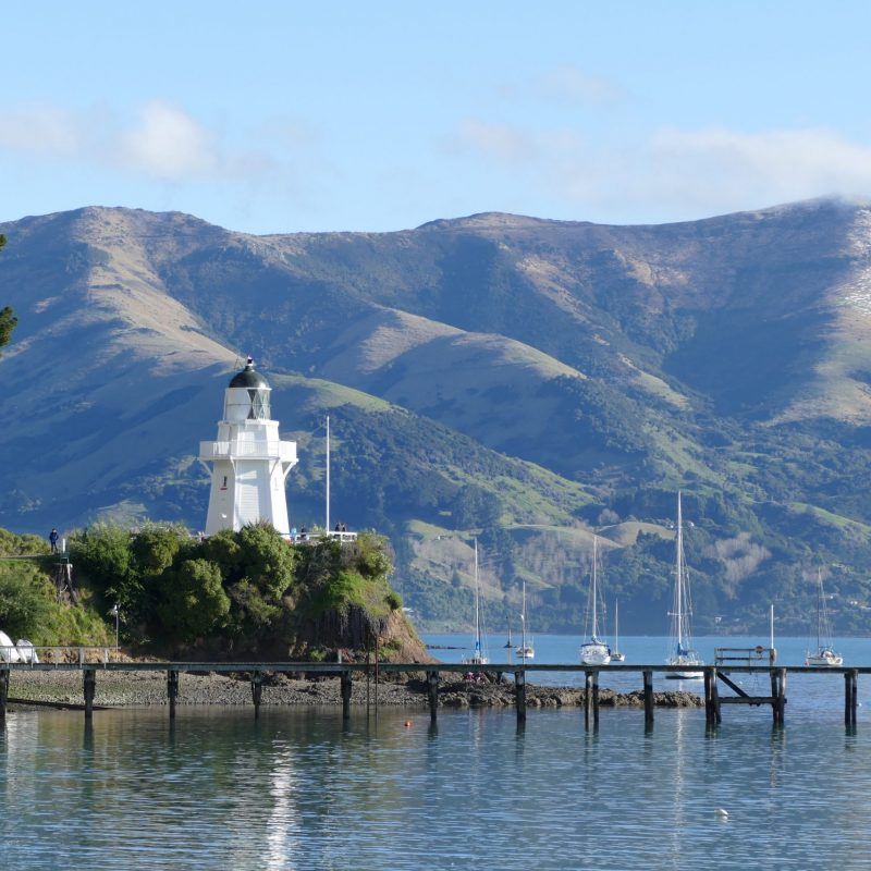 The Seventh Generation_Tours_Akaroa_Banks Peninsula_Marie Haley (16)