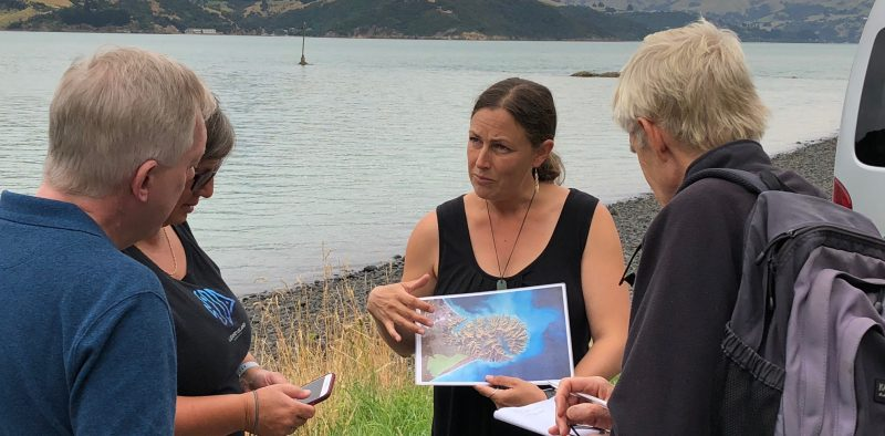 The Seventh Generation_Tours_Akaroa_Banks Peninsula_Marie Haley (4)