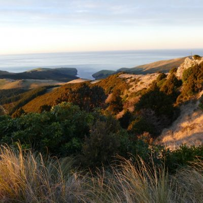 The Seventh Generation_Tours_Akaroa_Banks Peninsula_Marie Haley (47)